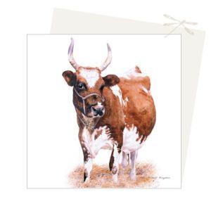 Cow card